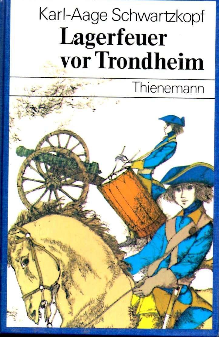 Lagerfeuer vor Trondheim